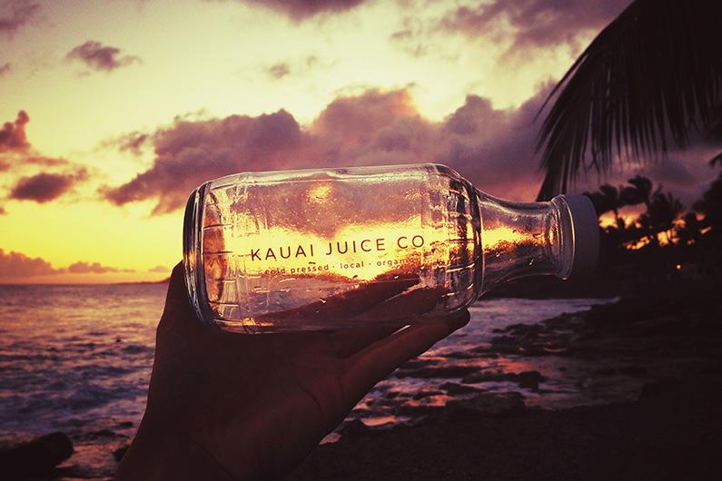 KauaiJuiceCoSlide_0003_Kauaijuice5